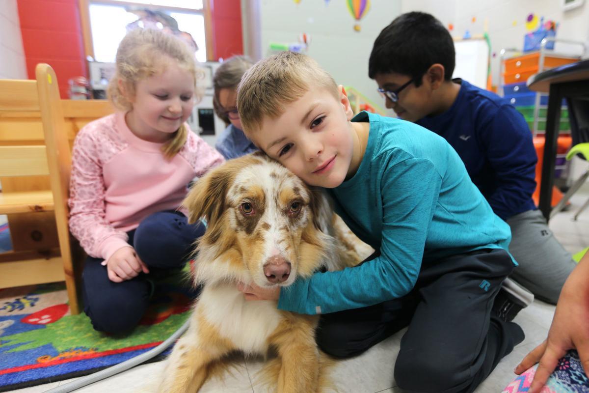 djr-2020-02-06-news-therapy-dog-arp1