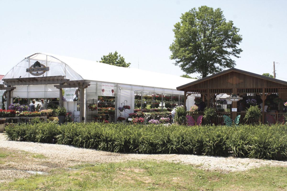 Walton's Greenhouse