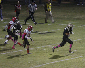 Holland's fumble recovery changes Panthers' momentum