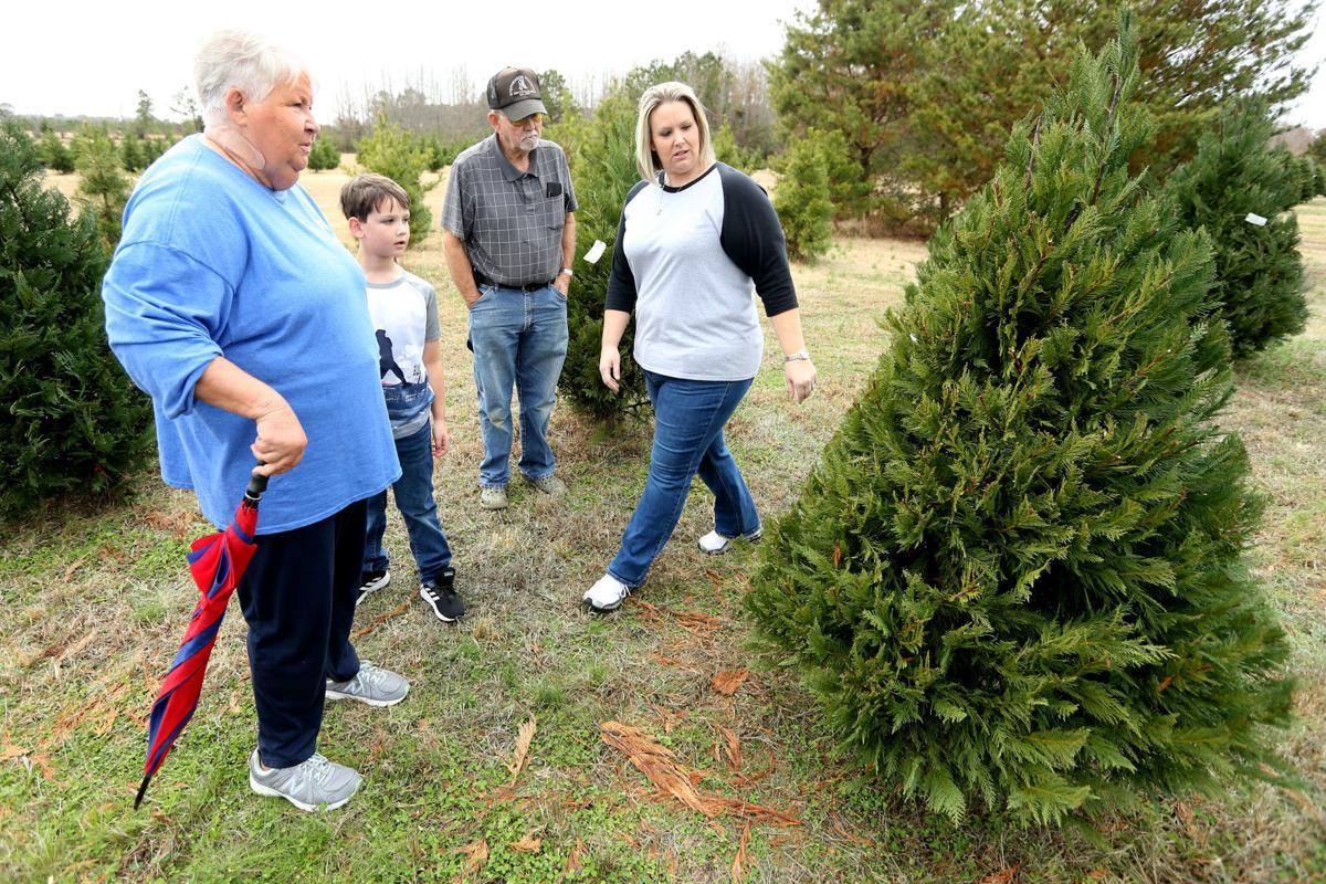 djr-2019-12-02-news-tree-farm-feature-arp4