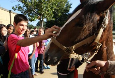 Colonial horse visits New Albany school