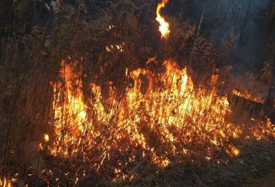 State burn ban lifted, county bans remain