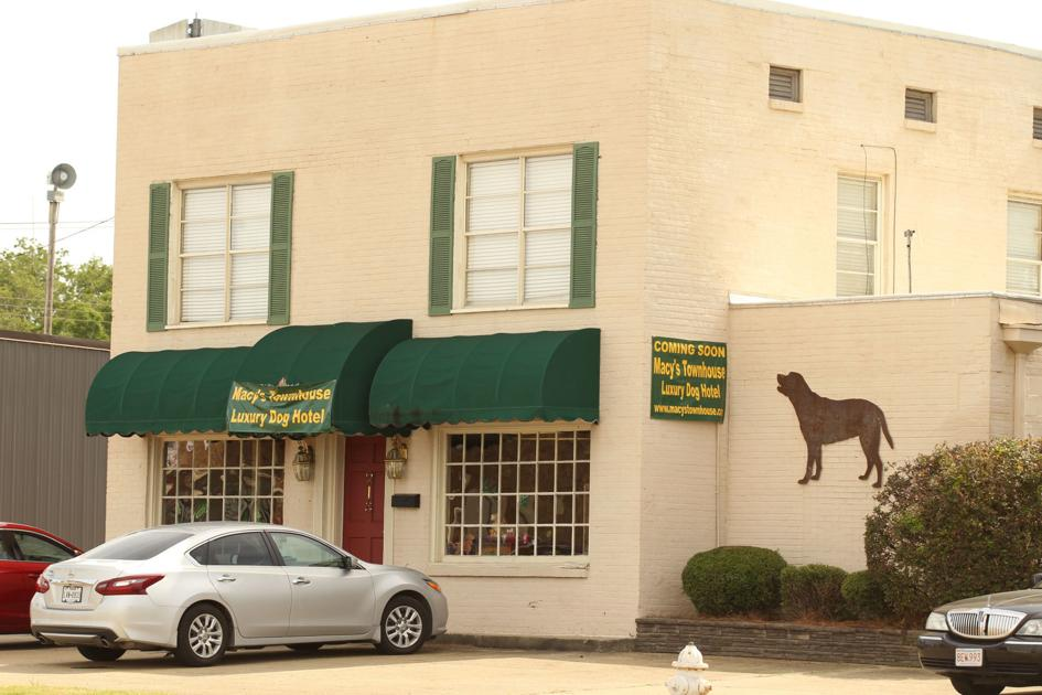 Local dog hotel listed as top hotel for dogs
