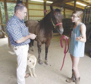 Large-animal vets in short supply   Business   djournal com