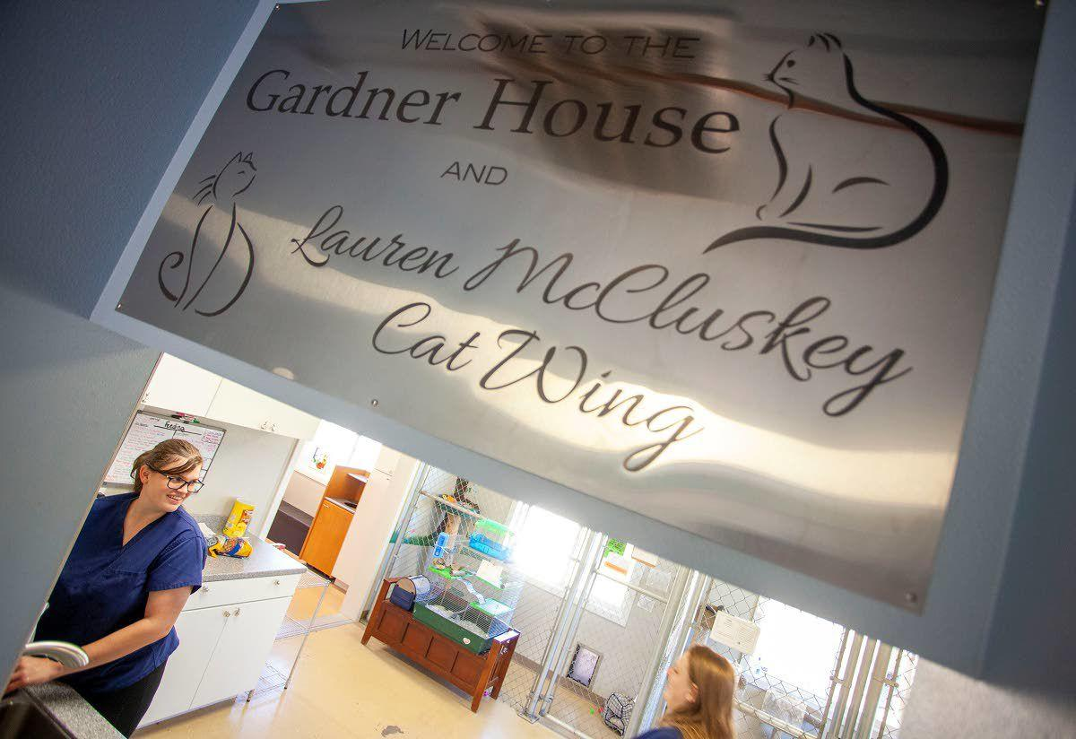 New cat wing honors Lauren McCluskey