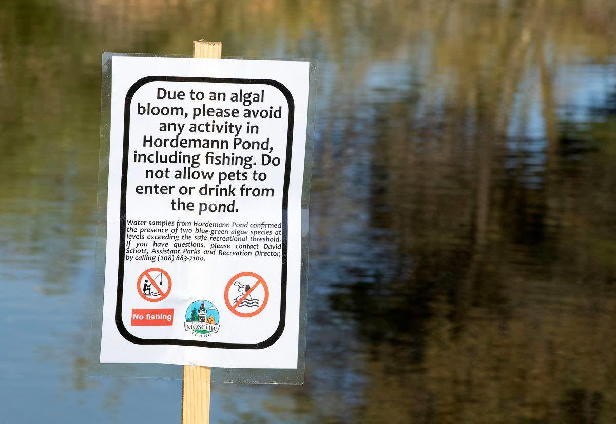 Officials warn: Stay away from Hordemann Pond