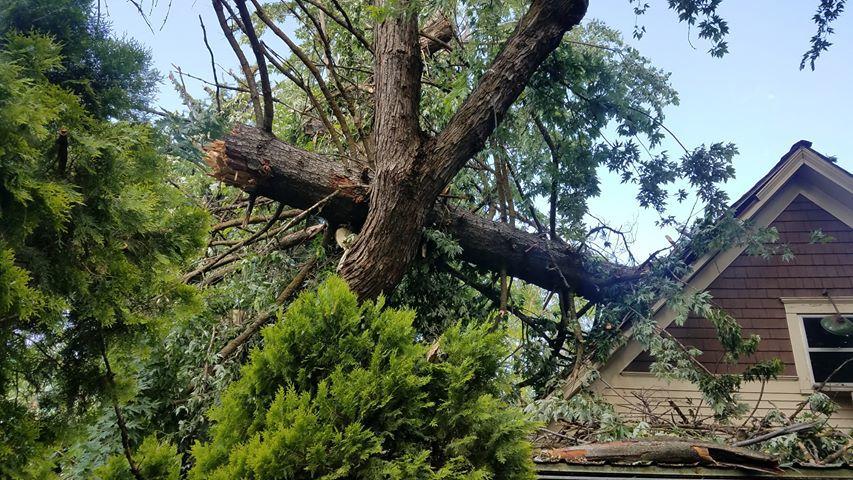 Big storm, big crash, big cleanup