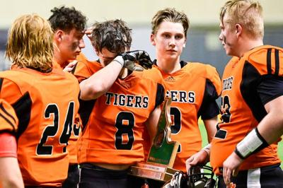 Tigers signal bright future in state semifinal loss