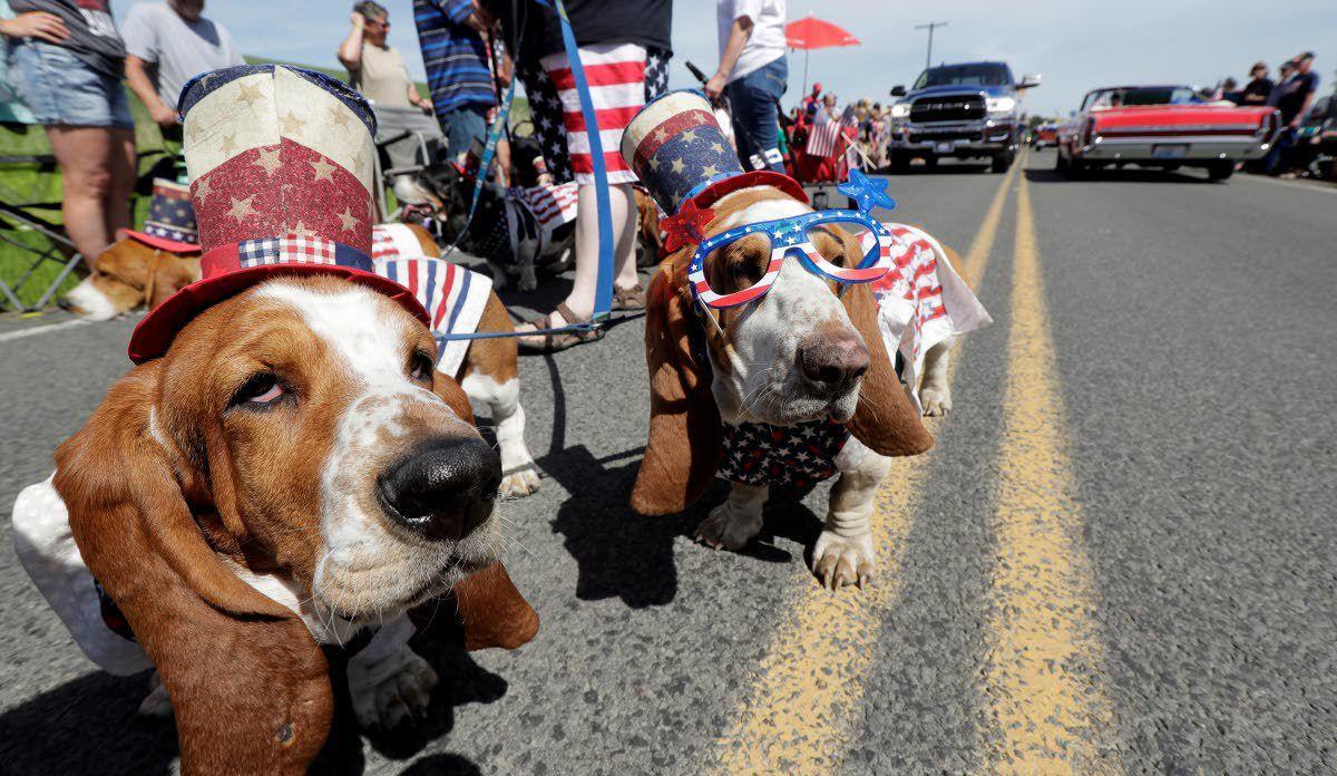 Johnson parade draws crowds and hounds