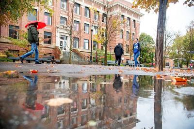 Rainy reflection