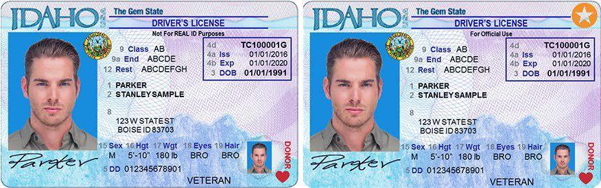 drivers license renewal troy missouri