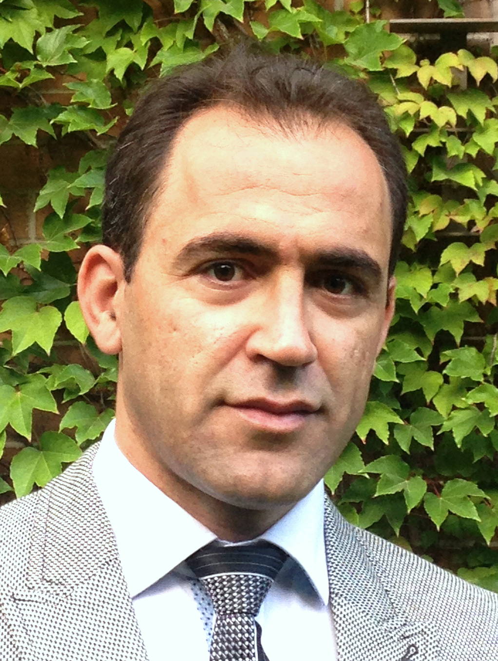 Amir Ameli