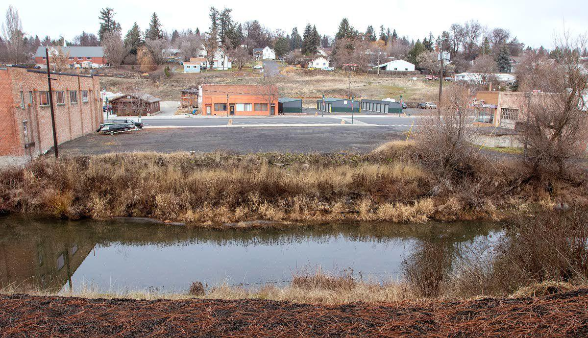 Brewery, vet clinic planned for downtown Palouse