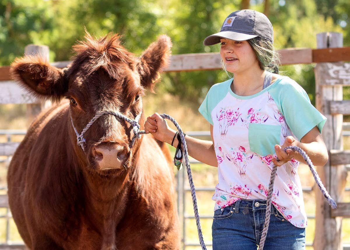 4-H, FFA can finish what they started