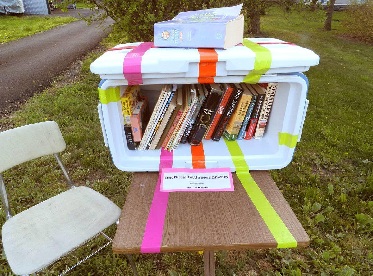 Starting an unofficial little free library with books purged from shelves