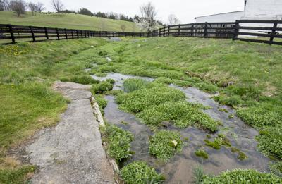 0411_dnr_Farm Fences_
