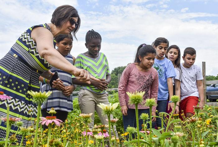 JMU garden program