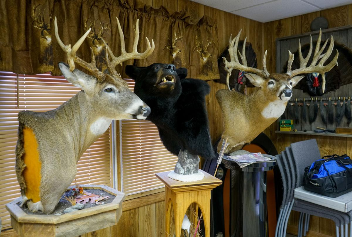 0412_dnr_Mark Taxidermy_2270