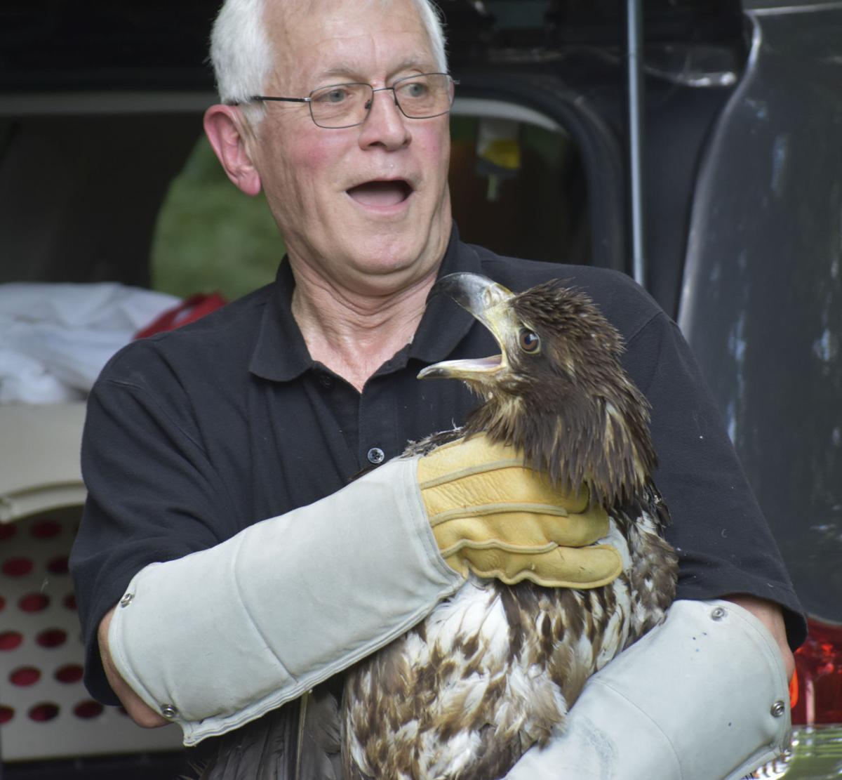 One Unhappy Bird