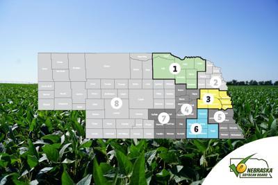 Nebraska Soybean Board seeks leaders to represent Nebraska soybean farmers