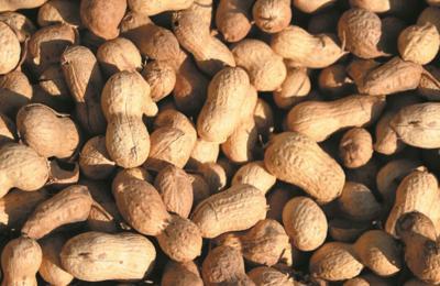 peanuts generic