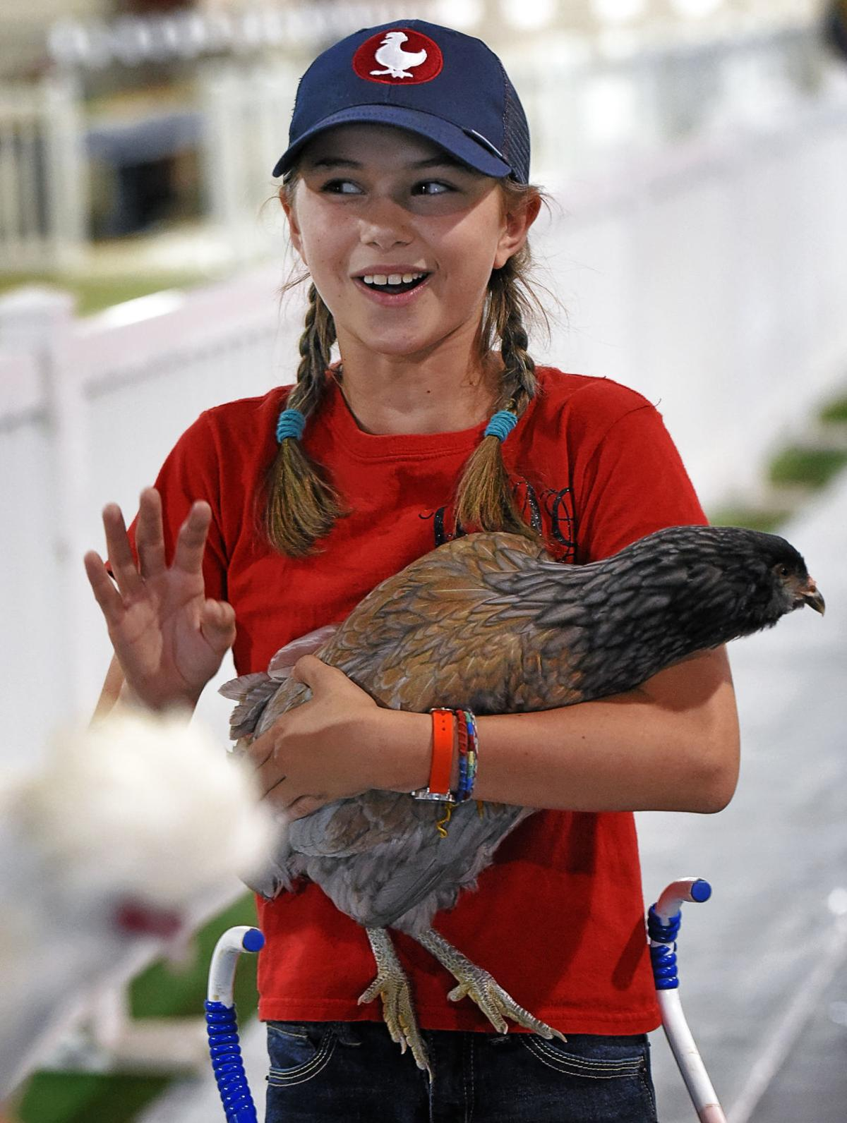 National Peanut Festival raising show chickens