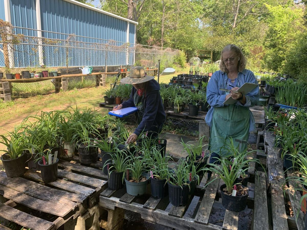 Wiregrass Master Gardeners ready for spring plant sale