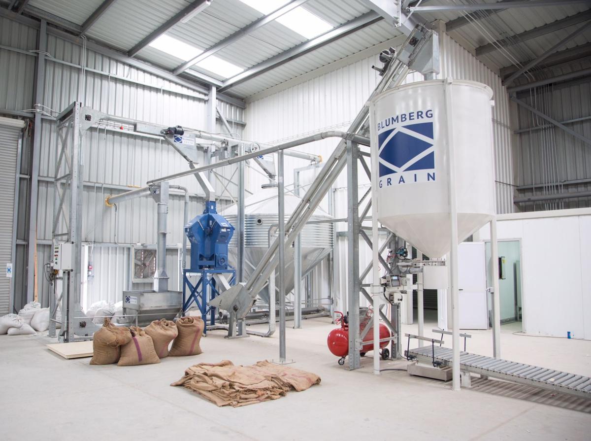 Blumberg Grain processing