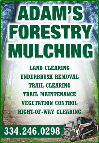 Adam's Forestry Mulching | Our Services