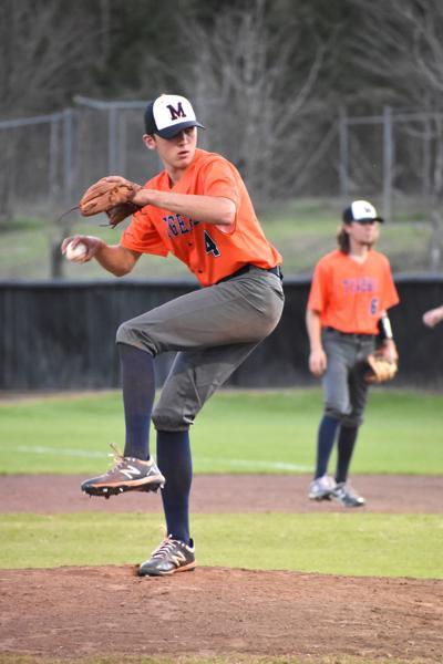 Malone baseball