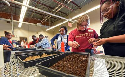 Northview special education students experience different careers