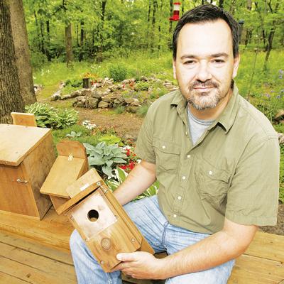 Pinzones y otras aves que utilizan Bird Houses