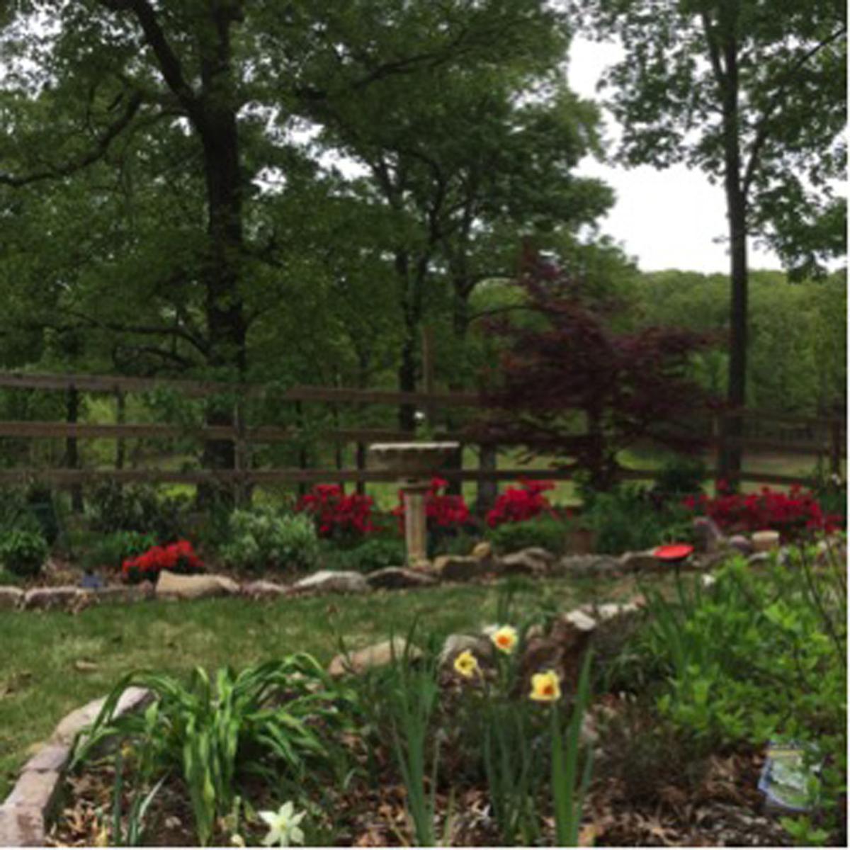 Gardening for mental health