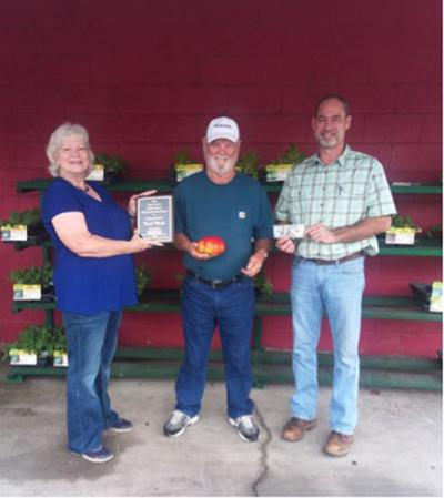 Woods wins 26th 'Great Tomato Contest'