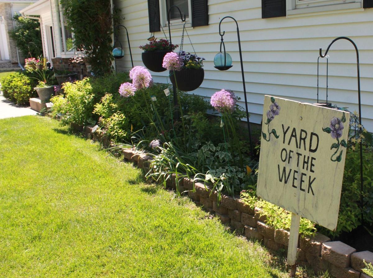 Yard of the Week 1