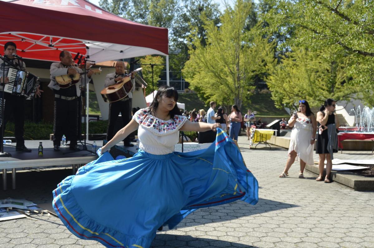 The Decennial of the Latino Street Fair