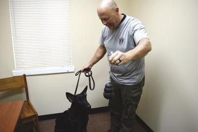 EKU PD begins training new bomb dog