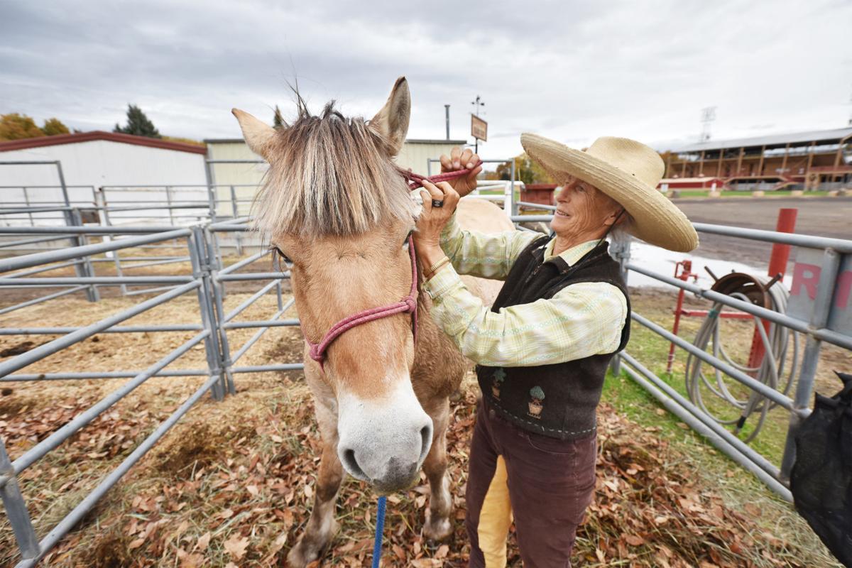 Long-haul horse riding