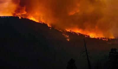 Wildfire shot