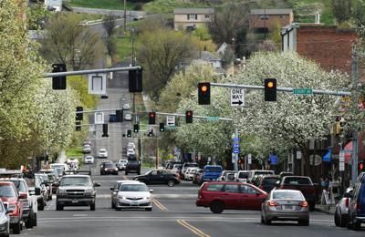 Main Street trees in bloom