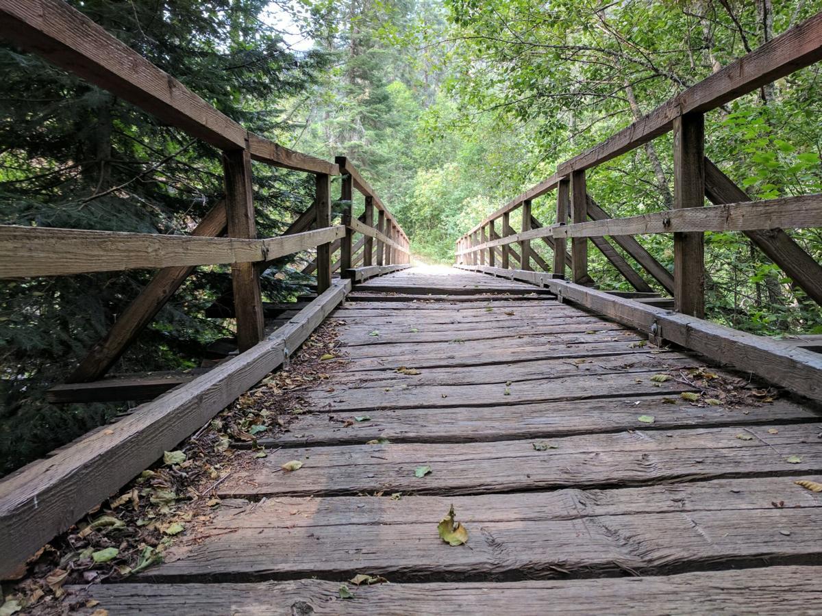 Burnt Cabin Creek Trail bridge