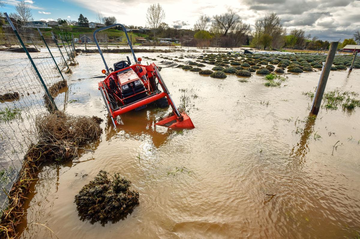 Flooding Folo