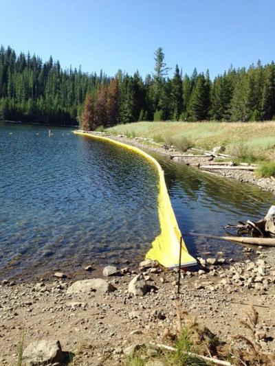 Dam maintenance to close portion of Olive Lake