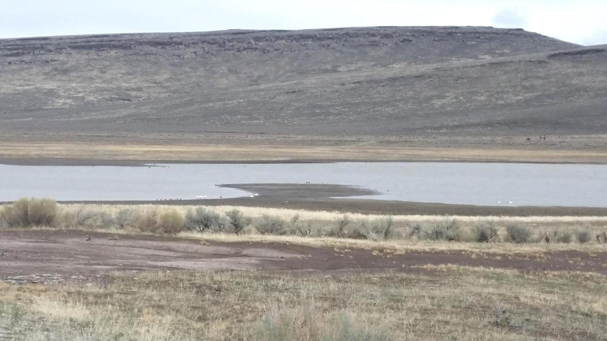 Likely that no Lahontans remain in Mann Lake