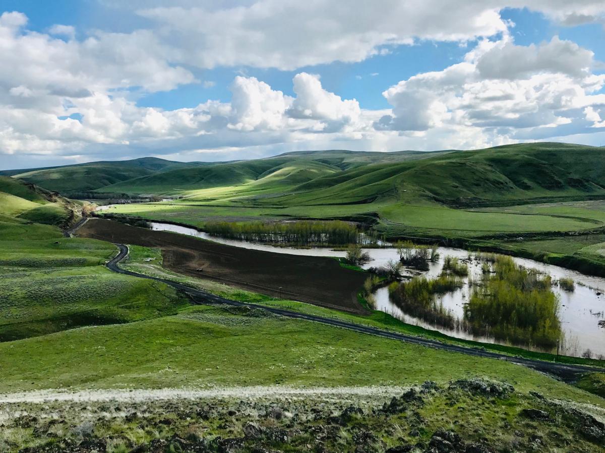 Umatilla River in Echo