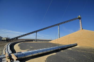 Wheat harvest in full swing across Eastern Oregon