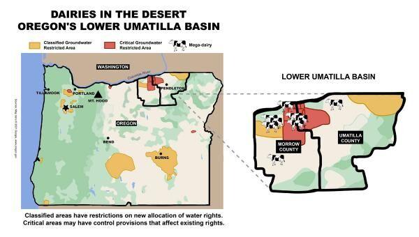 Dairies in the desert