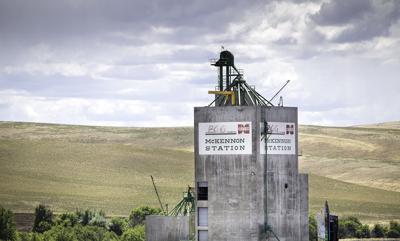 PENDLETON PGG sells grain assets to United Grain Corporation