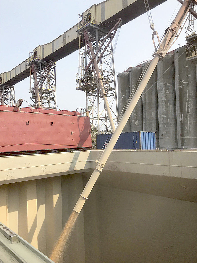 Northwest wheat to fight hunger in Yemen