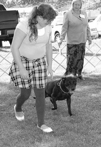 Fairgrounds go to the dogs